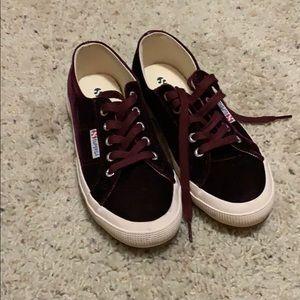 Superga maroon velvet shoes